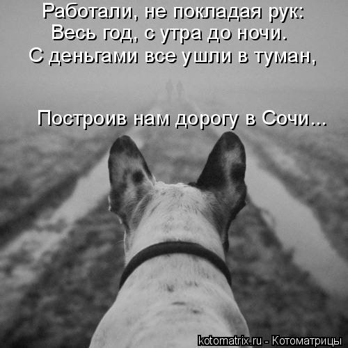 Котоматрица: Работали, не покладая рук: Весь год, с утра до ночи. С деньгами все ушли в туман, Построив нам дорогу в Сочи...