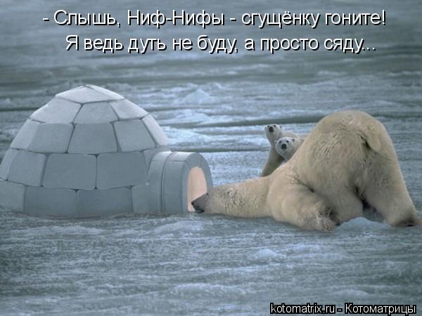 Котоматрица: - Слышь, Ниф-Нифы - сгущёнку гоните! Я ведь дуть не буду, а просто сяду...