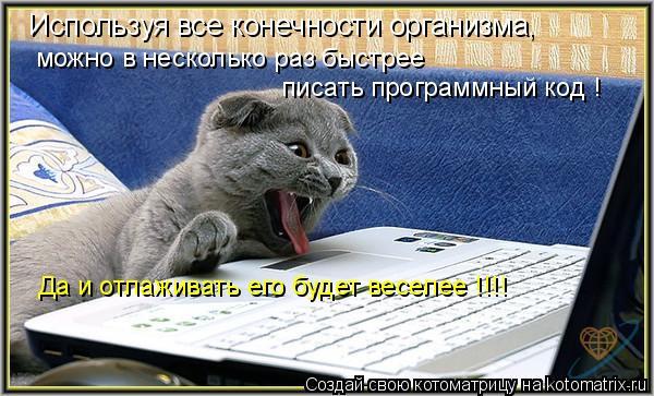 Котоматрица: Используя все конечности организма, можно в несколько раз быстрее  писать программный код ! Да и отлаживать его будет веселее !!!!