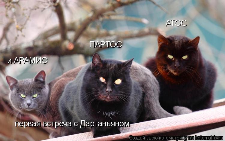 Котоматрица: АТОС ПАРТОС и АРАМИС первая встреча с Дартаньяном