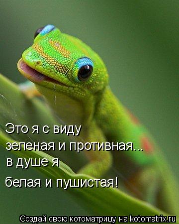 Котоматрица: Это я с виду зеленая и противная... в душе я белая и пушистая!