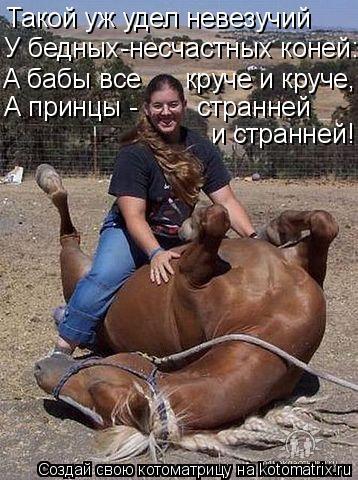 Котоматрица: Такой уж удел невезучий У бедных-несчастных коней: А бабы все      круче и круче, А принцы -        странней  и странней!