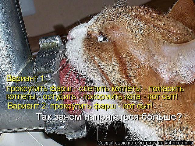 Котоматрица: прокрутить фарш - слепить котлеты - пожарить котлеты - остудить - покормить кота - кот сыт!  Так зачем напрягаться больше? Вариант 1:   Вариант 2: