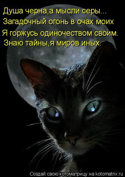 Котоматрица: Душа черна,а мысли серы... Загадочный огонь в очах моих Я горжусь одиночеством своим. Знаю тайны,я миров иных.