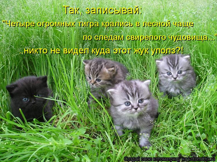 http://kotomatrix.ru/images/lolz/2011/12/07/1056458.jpg