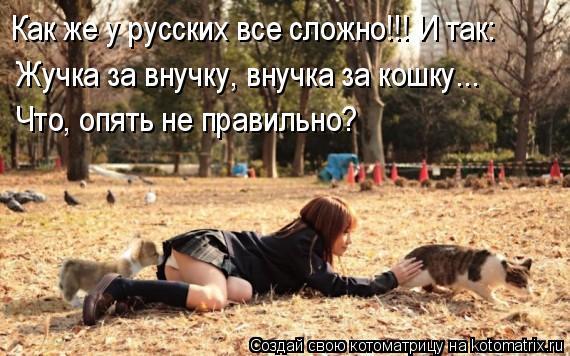 Котоматрица: Как же у русских все сложно!!! И так:  Жучка за внучку, внучка за кошку... Что, опять не правильно?