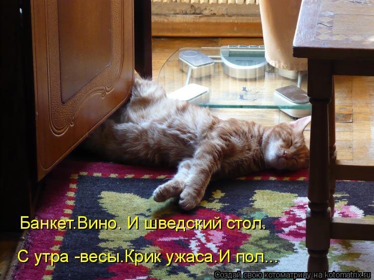 Котоматрица: Банкет.Вино. И шведский стол. С утра -весы.Крик ужаса.И пол...