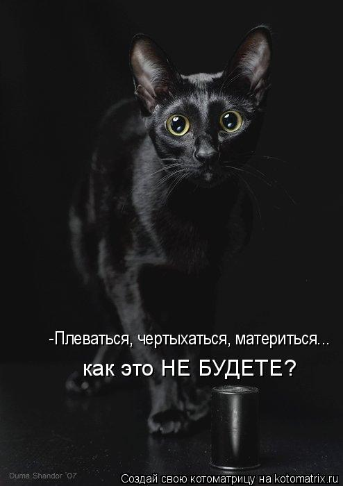 Котоматрица: -Плеваться, чертыхаться, материться... как это НЕ БУДЕТЕ?