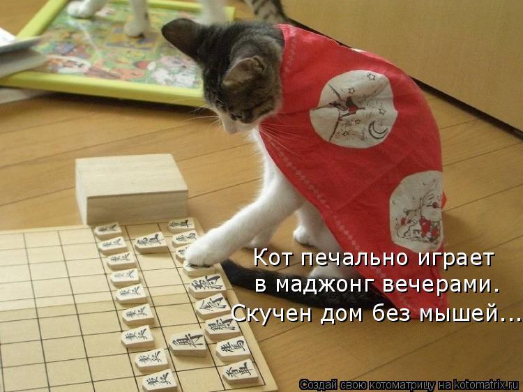 Котоматрица: Кот печально играет  в маджонг вечерами. Скучен дом без мышей…..