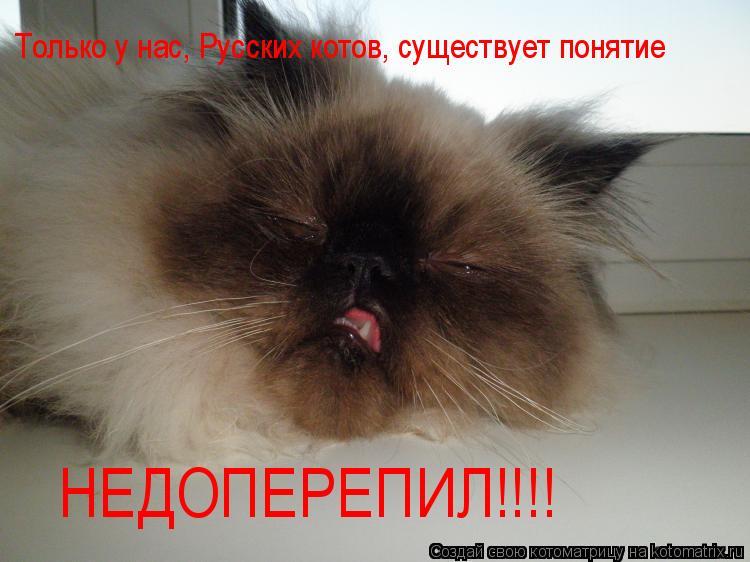 Котоматрица: Только у нас, Русских котов, существует понятие НЕДОПЕРЕПИЛ!!!!