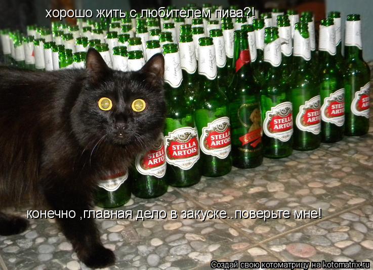 Котоматрица: хорошо жить с любителем пива?! конечно ,главная дело в закуске..поверьте мне!