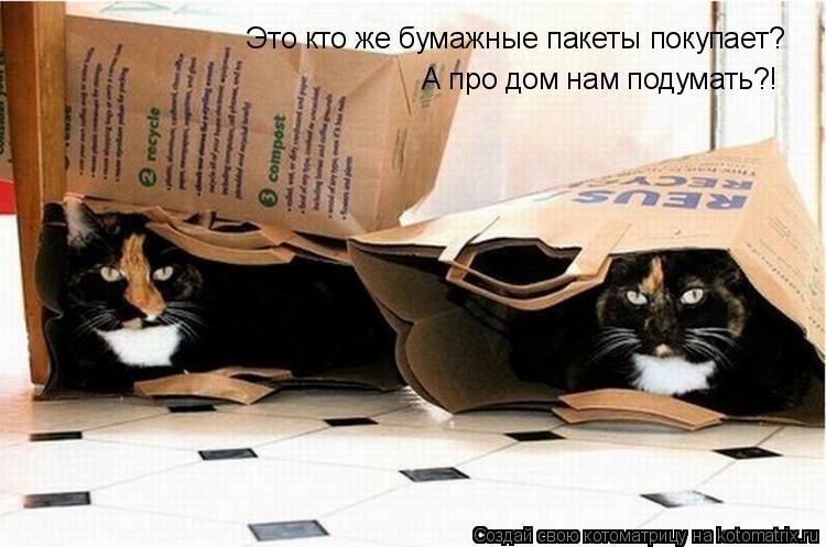 Котоматрица: Это кто же бумажные пакеты покупает? А про дом нам подумать?!