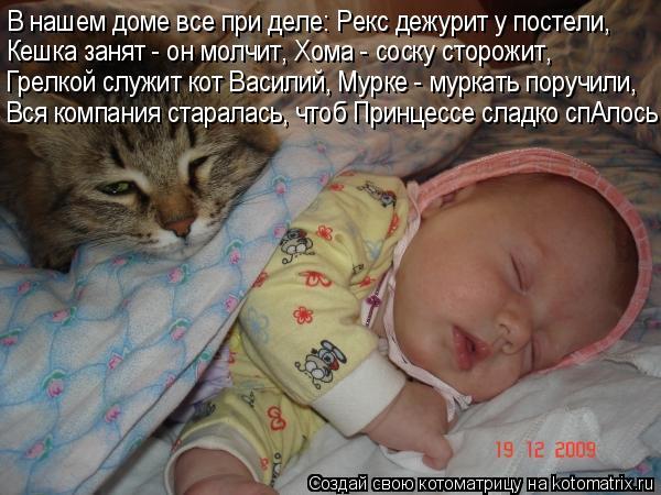 Котоматрица: В нашем доме все при деле: Рекс дежурит у постели, Кешка занят - он молчит, Хома - соску сторожит, Вся компания старалась, чтоб Принцессе сладк