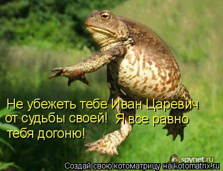 Котоматрица: Не убежеть тебе Иван Царевич от судьбы своей! Я все равно тебя догоню!