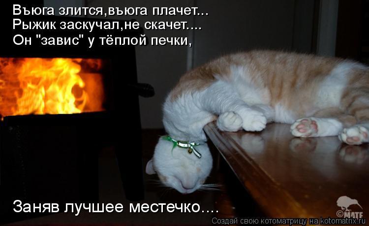 """Котоматрица - Въюга злится,въюга плачет... Рыжик заскучал,не скачет.... Он """"завис"""" у"""
