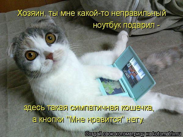 Котоматрица - Хозяин, ты мне какой-то неправильный ноутбук подарил - здесь такая сим