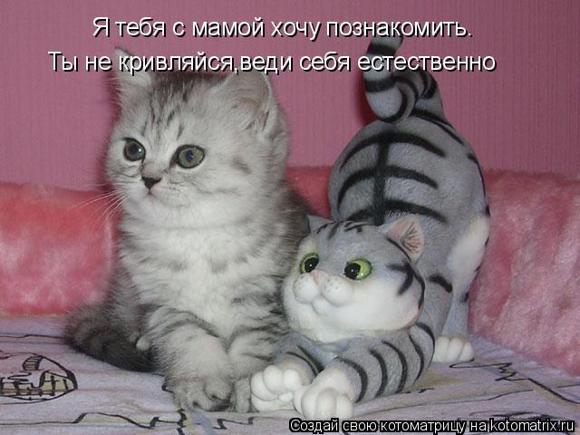 Котоматрица - Я тебя с мамой хочу познакомить. Ты не кривляйся,веди себя естественно