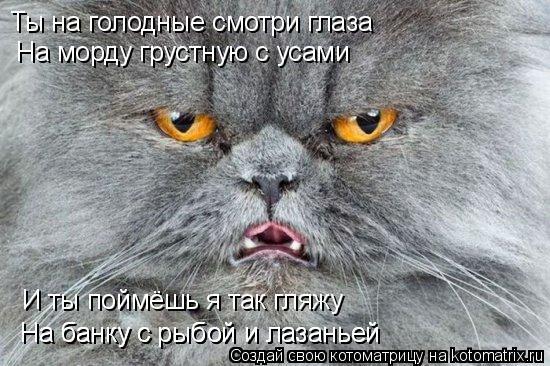 Котоматрица: Ты на голодные смотри глаза На морду грустную с усами И ты поймёшь я так гляжу На банку с рыбой и лазаньей На банку с рыбой и лазаньей