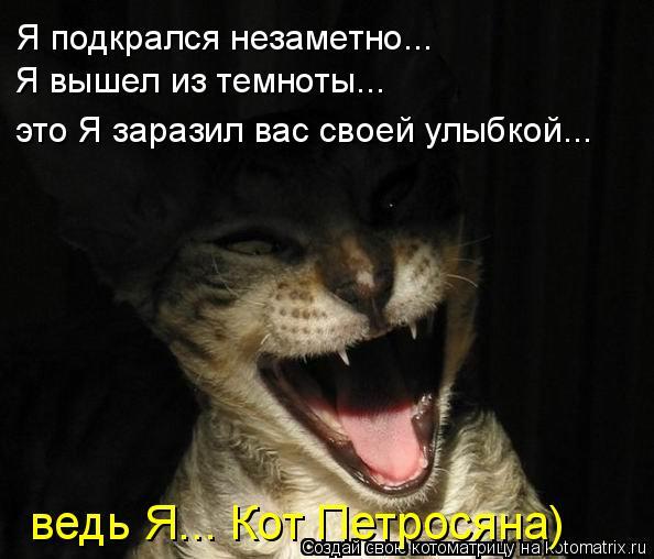 Котоматрица: Я подкрался незаметно... Я вышел из темноты... это Я заразил вас своей улыбкой... ведь Я... Кот Петросяна)