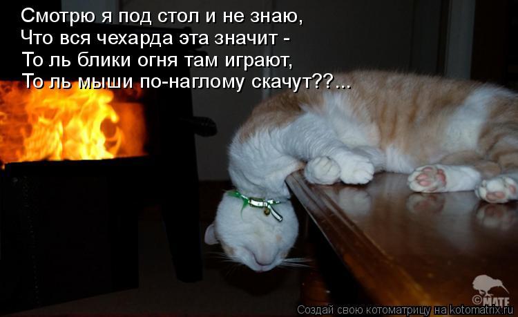 Дохлый кот - мало забот Наш крематорий избавит вас и от этой малости...