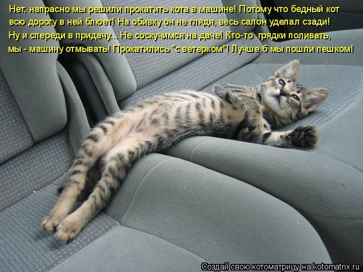 Котоматрица: Нет, напрасно мы решили прокатить кота в машине! Потому что бедный кот  всю дорогу в ней блюет! На обивку он не глядя, весь салон уделал сзади!