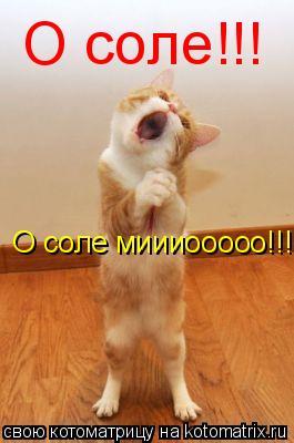Котоматрица: О соле!!! О соле миииооооо!!!