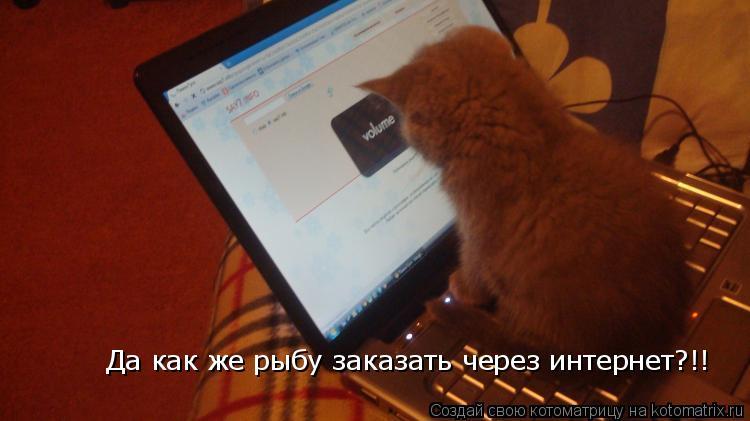 Котоматрица: Да как же рыбу заказать через интернет?!!