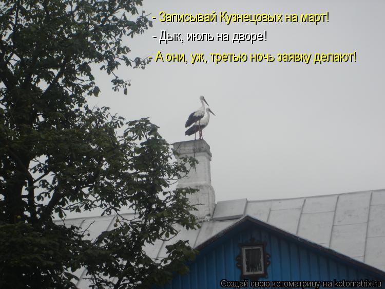 Котоматрица - - Записывай Кузнецовых на март! - Дык, июль на дворе! - А они, уж, тре