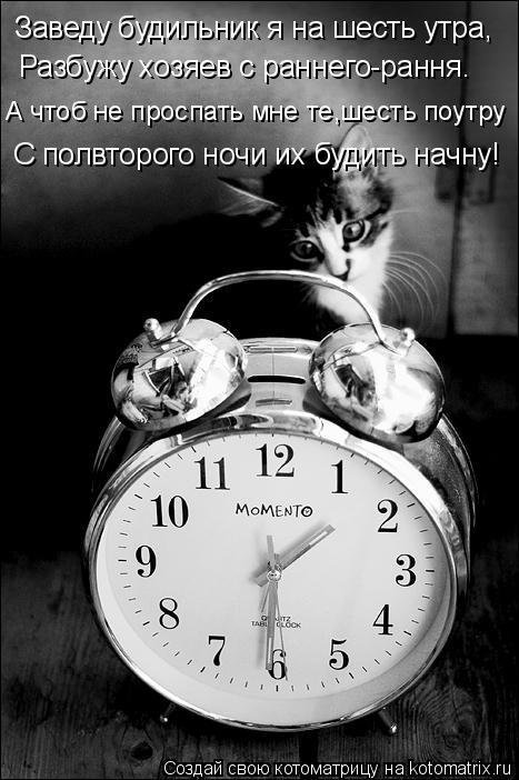 Котоматрица: А чтоб не проспать мне те,шесть поутру Заведу будильник я на шесть утра, Разбужу хозяев с раннего-рання. С полвторого ночи их будить начну!