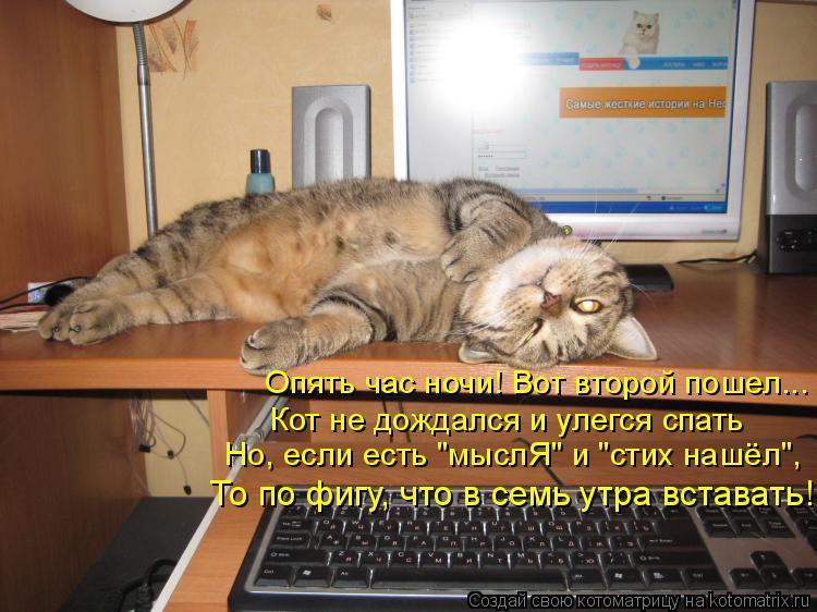 """Котоматрица: Опять час ночи! Вот второй пошел... Кот не дождался и улегся спать Но, если есть """"мыслЯ"""" и """"стих нашёл"""", То по фигу, что в семь утра вставать!"""