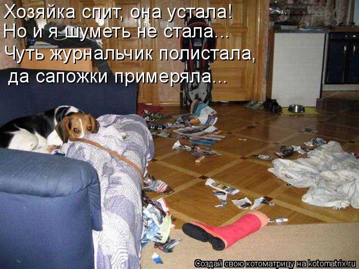 Котоматрица: Хозяйка спит, она устала! Но и я шуметь не стала... Чуть журнальчик полистала, да сапожки примеряла...