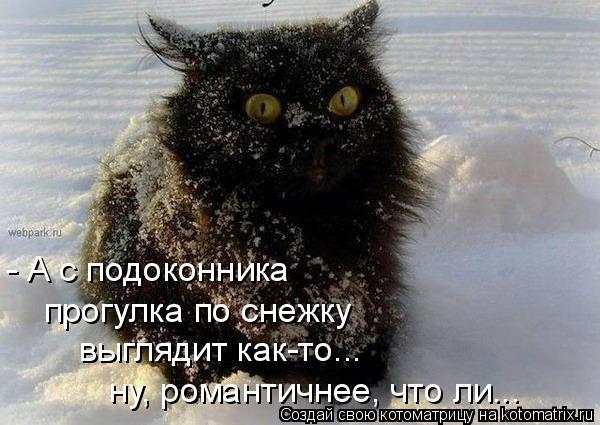 Котоматрица - - А с подоконника прогулка по снежку выглядит как-то... ну, романтичне