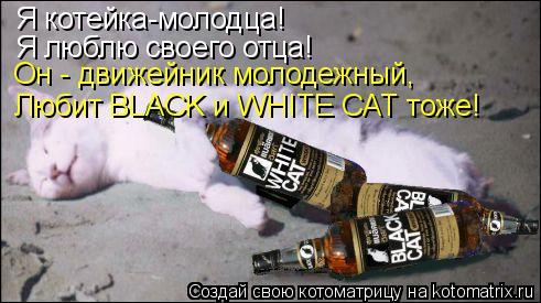 Котоматрица: Я котейка-молодца! Я люблю своего отца! Он - движейник молодежный, Любит BLACK и WHITE CAT тоже!