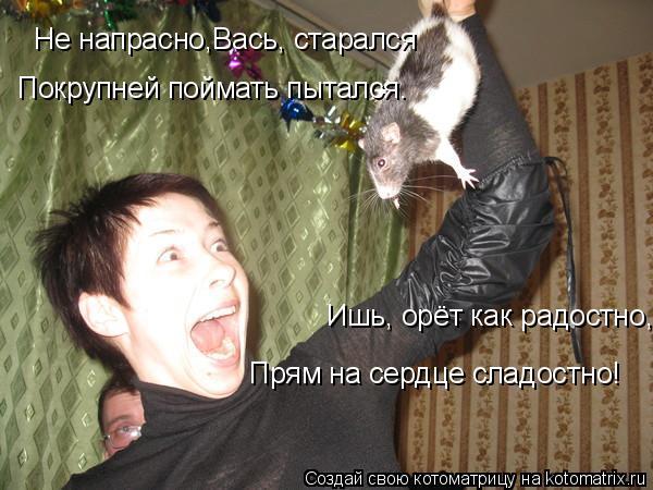 Котоматрица - Не напрасно,Вась, старался Ишь, орёт как радостно, Прям на сердце слад