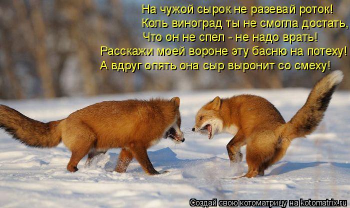 Котоматрица: На чужой сырок не разевай роток! Коль виноград ты не смогла достать, Что он не спел - не надо врать! Расскажи моей вороне эту басню на потеху!