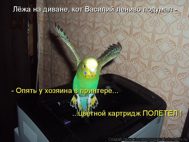 Котоматрица: Лёжа на диване, кот Василий лениво подумал - - Опять у хозяина в принтере... ...цветной картридж ПОЛЕТЕЛ !