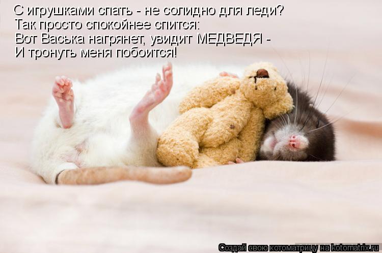 Котоматрица - С игрушками спать - не солидно для леди? Так просто спокойнее спится: