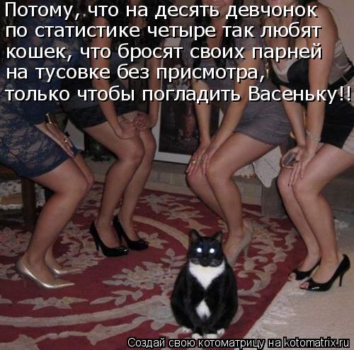 Котоматрица - Потому, что на десять девчонок по статистике четыре так любят кошек, ч