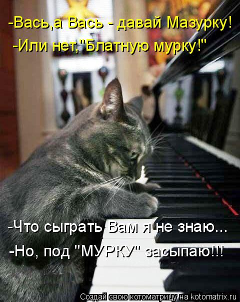"Котоматрица: -Вась,а Вась - давай Мазурку! -Или нет,""Блатную мурку!"" -Что сыграть Вам я не знаю... -Но, под ""МУРКУ"" засыпаю!!!"