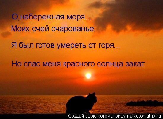 Котоматрица: Моих очей очарованье. О,набережная моря... Я был готов умереть от горя... Но спас меня красного солнца закат