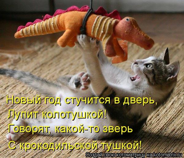 Котоматрица: Новый год стучится в дверь, Говорят, какой-то зверь С крокодильской тушкой! Лупит колотушкой!