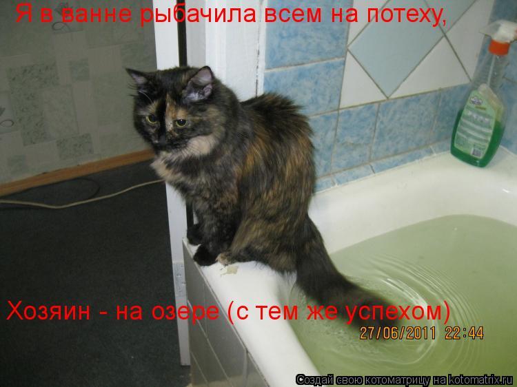 Котоматрица: Я в ванне рыбачила всем на потеху, Хозяин - на озере (с тем же успехом)
