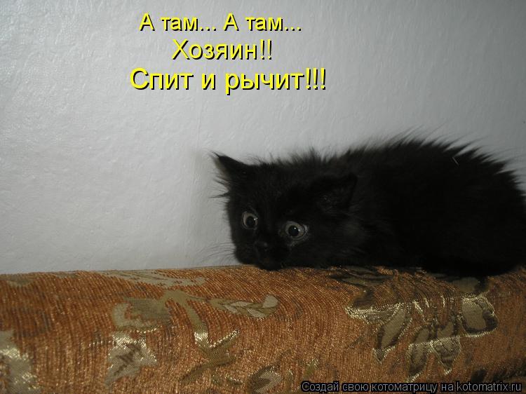 Котоматрица: А там... А там... Хозяин!! Спит и рычит!!!