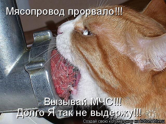 Котоматрица: Мясопровод прорвало!!! Вызывай МЧС!!!  Долго Я так не выдержу!!!