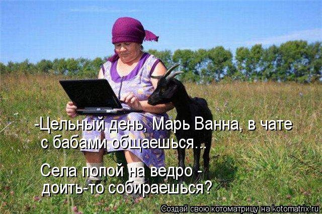 Котоматрица: -Цельный день, Марь Ванна, в чате  с бабами общаешься... Села попой на ведро -  доить-то собираешься?