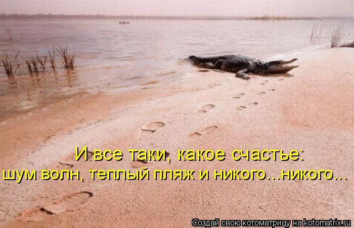 Котоматрица: И все таки, какое счастье:  шум волн, теплый пляж и никого...никого...