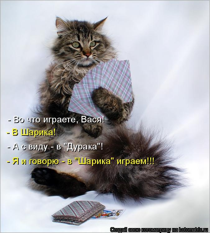 """Котоматрица: - Во что играете, Вася! - В Шарика! - А с виду - в """"Дурака""""! - Я и говорю - в """"Шарика"""" играем!!!"""