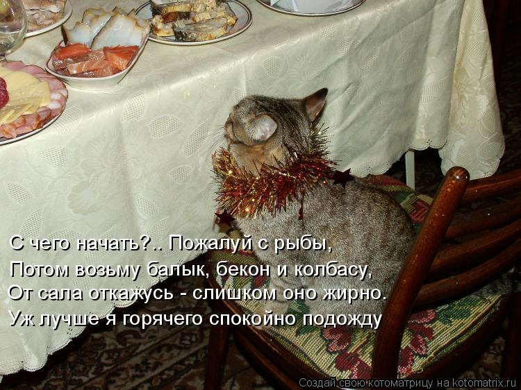 Котоматрица: С чего начать?.. Пожалуй с рыбы, Уж лучше я горячего спокойно подожду Потом возьму балык, бекон и колбасу, От сала откажусь - слишком оно жирно