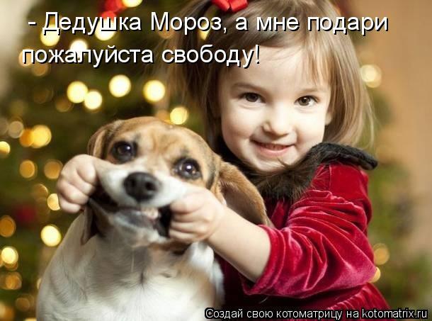 Котоматрица: - Дедушка Мороз, а мне подари  пожалуйста свободу!