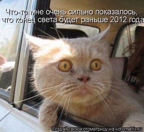 Котоматрица: Что-то мне очень сильно показалось,  что конец света будет раньше 2012 года!